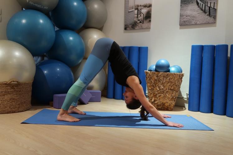 chien-tete-bas-julia-lemetais-yoga